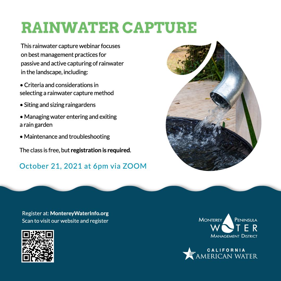 Rainwater Capture Image
