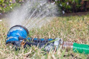hose spraying water